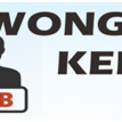 Lowongan Kerja (Feb 2020)